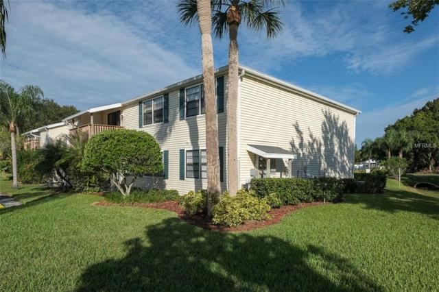 125 Camphor Circle B, Oldsmar, FL 34677 (MLS #U8021219) :: Lovitch Realty Group, LLC