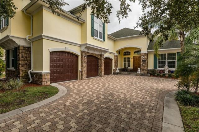 2608 Velventos Drive, Clearwater, FL 33761 (MLS #U8021223) :: RE/MAX CHAMPIONS