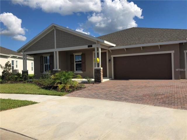 7612 Roma Dune Drive, Wesley Chapel, FL 33545 (MLS #U8021351) :: Delgado Home Team at Keller Williams