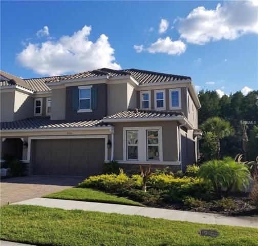 8720 Terracina Lake Drive, Tampa, FL 33625 (MLS #U8021424) :: Baird Realty Group