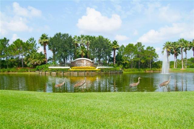 5360 Hyland Hills Avenue #2614, Sarasota, FL 34241 (MLS #U8021582) :: Medway Realty