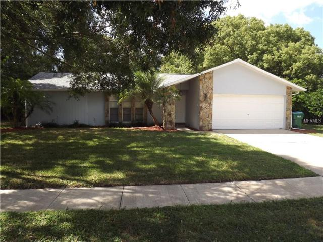 605 Hollow Ridge Road, Palm Harbor, FL 34683 (MLS #U8021639) :: Delgado Home Team at Keller Williams
