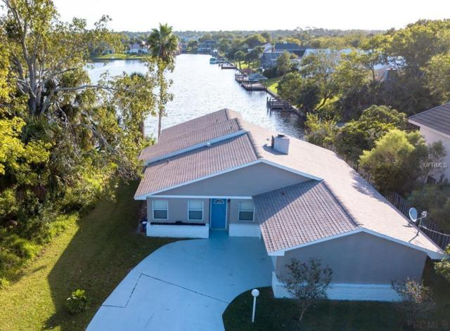 6 Cimmaron Drive 6 CIMMARON DRIVE, Palm Coast, FL 32137 (MLS #U8022117) :: Delgado Home Team at Keller Williams