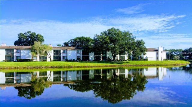 146 Lakeview Way #146, Oldsmar, FL 34677 (MLS #U8022232) :: SANDROC Group