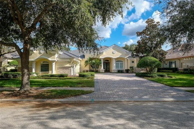 913 Skye Lane, Palm Harbor, FL 34683 (MLS #U8022345) :: Medway Realty