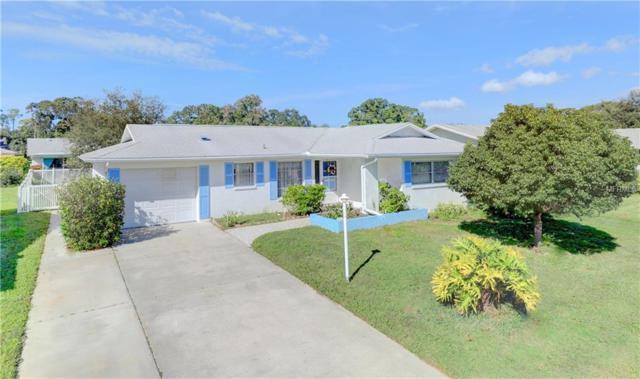 1479 Dundee Drive, Palm Harbor, FL 34684 (MLS #U8022804) :: Jeff Borham & Associates at Keller Williams Realty