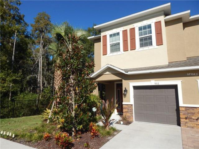 902 Vineyard Lane, Oldsmar, FL 34677 (MLS #U8023075) :: Cartwright Realty