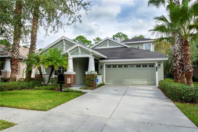 20040 Heritage Point Drive, Tampa, FL 33647 (MLS #U8023182) :: Team Bohannon Keller Williams, Tampa Properties