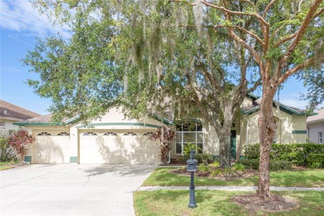 10112 Bennington Drive, Tampa, FL 33626 (MLS #U8023246) :: The Duncan Duo Team