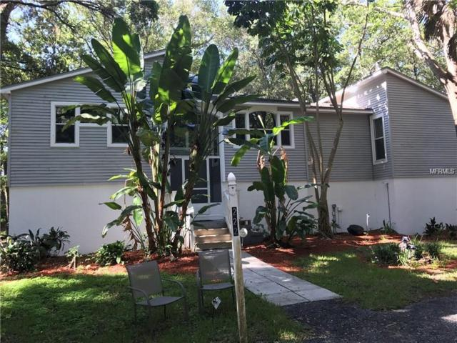 222 Arlington Avenue E, Oldsmar, FL 34677 (MLS #U8023373) :: Mark and Joni Coulter | Better Homes and Gardens