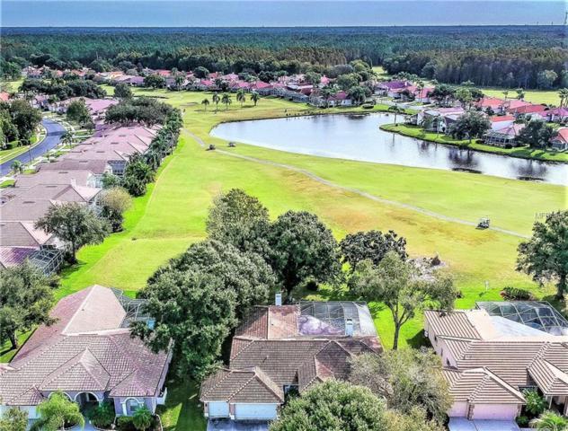 1115 Kings Way Lane, Tarpon Springs, FL 34688 (MLS #U8023555) :: Lock and Key Team