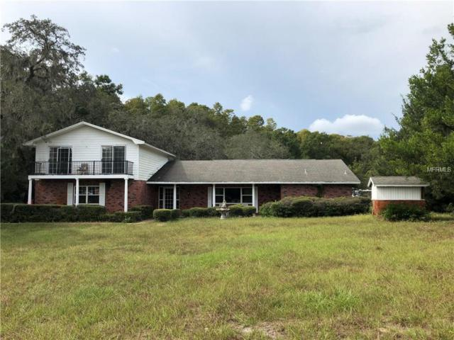 10241 Little Road, New Port Richey, FL 34654 (MLS #U8023591) :: Premium Properties Real Estate Services