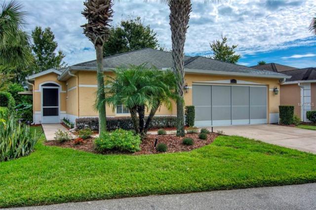 10732 Collar Drive, San Antonio, FL 33576 (MLS #U8023730) :: Delgado Home Team at Keller Williams