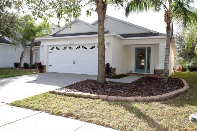 15411 Peach Stone Place, Ruskin, FL 33573 (MLS #U8023840) :: Premium Properties Real Estate Services