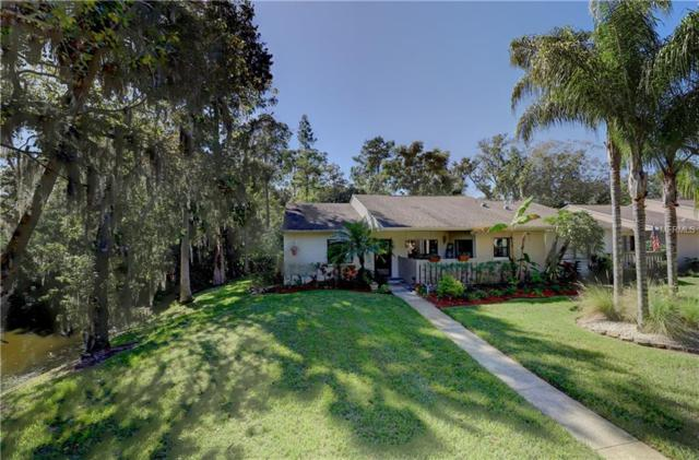 620 S Woodlands Drive, Oldsmar, FL 34677 (MLS #U8024112) :: SANDROC Group