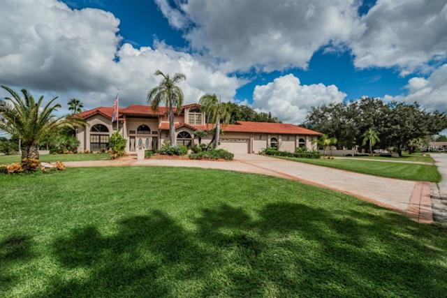 8744 Cessna Drive, New Port Richey, FL 34654 (MLS #U8024133) :: Mark and Joni Coulter | Better Homes and Gardens
