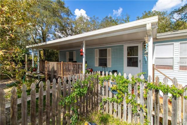 13123 Casa Bianca Avenue, New Port Richey, FL 34654 (MLS #U8024148) :: GO Realty