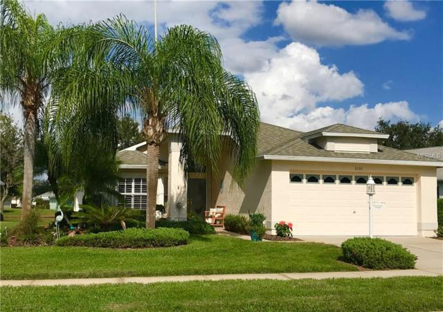 1030 Sweet Jasmine Dr, Trinity, FL 34655 (MLS #U8024179) :: Lock and Key Team