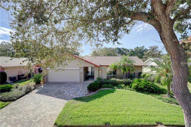 2861 Thistle Court N, Palm Harbor, FL 34684 (MLS #U8024189) :: Jeff Borham & Associates at Keller Williams Realty