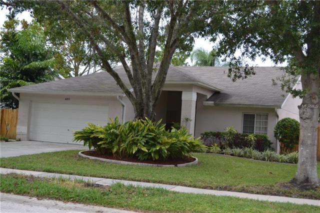 4499 Anglers Crossing, Palm Harbor, FL 34685 (MLS #U8024240) :: Lock and Key Team