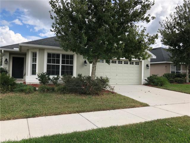 9546 Jaybird Lane, Land O Lakes, FL 34638 (MLS #U8024468) :: Delgado Home Team at Keller Williams