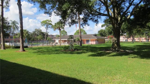 4720 Locust Street NE #312, St Petersburg, FL 33703 (MLS #U8024480) :: Dalton Wade Real Estate Group
