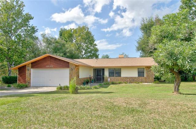 6555 Clearwater Drive, Spring Hill, FL 34606 (MLS #U8024525) :: Dalton Wade Real Estate Group