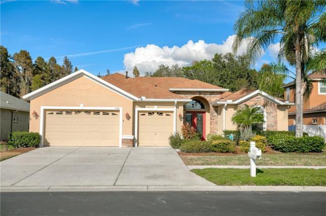 1526 Beaconsfield Drive, Wesley Chapel, FL 33543 (MLS #U8024573) :: Jeff Borham & Associates at Keller Williams Realty
