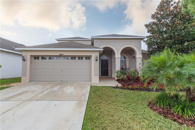 30624 Palmerston Place, Wesley Chapel, FL 33545 (MLS #U8024643) :: The Duncan Duo Team