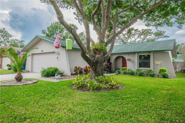 508 Macleod Terrace, Dunedin, FL 34698 (MLS #U8024659) :: Burwell Real Estate