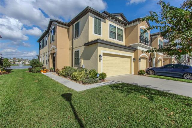 9111 Carolina Wren Drive, Tampa, FL 33626 (MLS #U8024706) :: The Duncan Duo Team