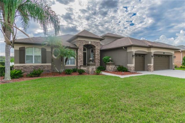 16047 Ivy Lake Drive, Odessa, FL 33556 (MLS #U8024739) :: Team Bohannon Keller Williams, Tampa Properties