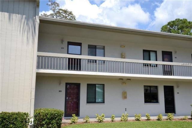 113 Nancy Drive, Oldsmar, FL 34677 (MLS #U8024757) :: EXIT King Realty