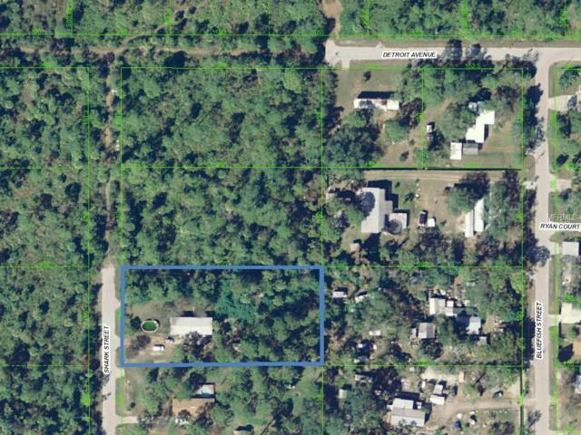 15104 Shark Street, Hudson, FL 34667 (MLS #U8024875) :: Zarghami Group