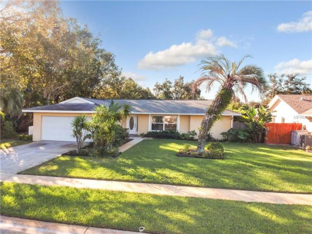 13600 Serena Drive, Largo, FL 33774 (MLS #U8024924) :: GO Realty