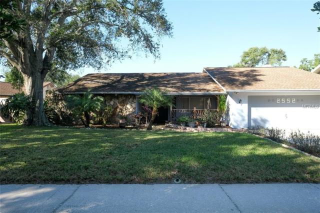 2552 Winding Way, Palm Harbor, FL 34683 (MLS #U8025017) :: Delgado Home Team at Keller Williams