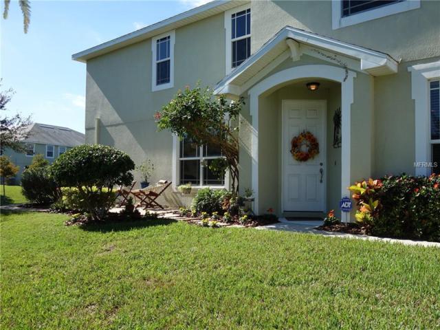 316 Harbor Ridge Dr, Palm Harbor, FL 34683 (MLS #U8025125) :: The Duncan Duo Team