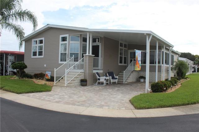 39820 Us Highway 19 N #243, Tarpon Springs, FL 34689 (MLS #U8025143) :: Jeff Borham & Associates at Keller Williams Realty