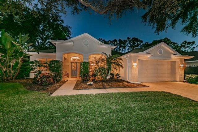 3669 Siena Lane, Palm Harbor, FL 34685 (MLS #U8025159) :: Jeff Borham & Associates at Keller Williams Realty