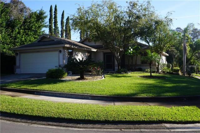 1721 Winners Circle, Tarpon Springs, FL 34689 (MLS #U8025186) :: Jeff Borham & Associates at Keller Williams Realty