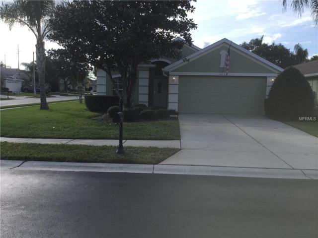 3023 Sotheby Lane, Land O Lakes, FL 34639 (MLS #U8025268) :: EXIT King Realty