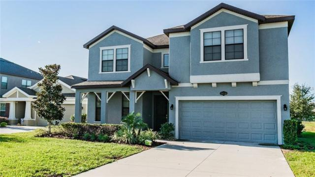 19216 Verdant Pasture Way, Tampa, FL 33647 (MLS #U8025584) :: Team Bohannon Keller Williams, Tampa Properties