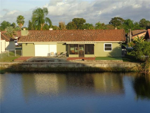 9731 San Lorenzo Way, Port Richey, FL 34668 (MLS #U8025764) :: The Duncan Duo Team