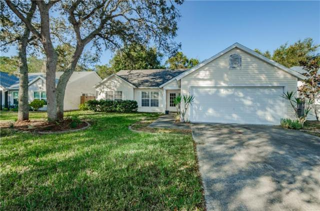 1511 River Oaks Drive, Tarpon Springs, FL 34689 (MLS #U8026003) :: Beach Island Group