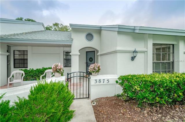 3875 Pheasant Court, Palm Harbor, FL 34685 (MLS #U8026128) :: Delgado Home Team at Keller Williams