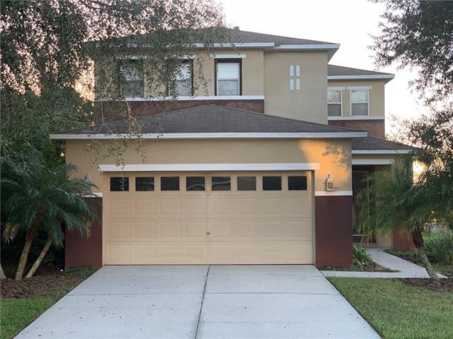 2509 Silvermoss Drive, Wesley Chapel, FL 33544 (MLS #U8026403) :: Team Bohannon Keller Williams, Tampa Properties