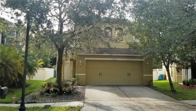31636 Spoonflower Circle, Wesley Chapel, FL 33545 (MLS #U8026535) :: The Duncan Duo Team