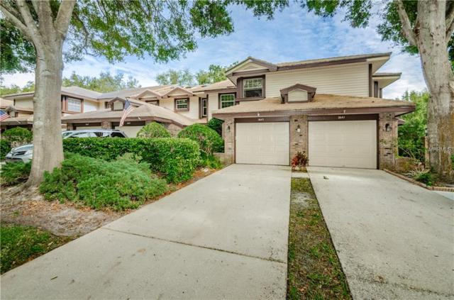 2643 Sequoia Terrace, Palm Harbor, FL 34683 (MLS #U8026599) :: Advanta Realty