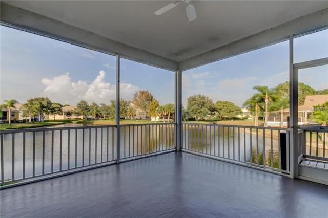 1010 Caravel Court, Tarpon Springs, FL 34689 (MLS #U8026621) :: Team Virgadamo