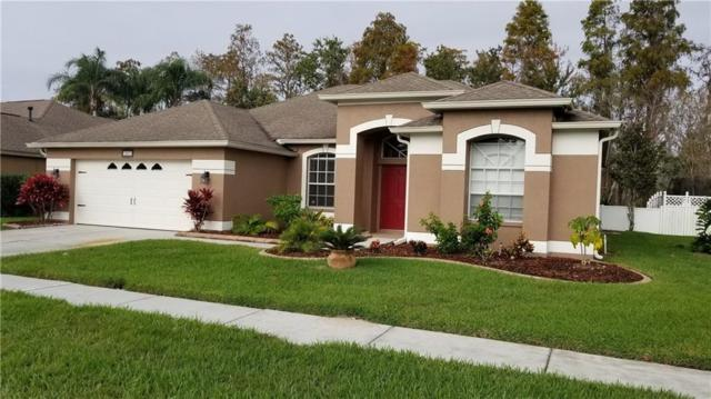 1607 Stipule Court, Trinity, FL 34655 (MLS #U8026742) :: RE/MAX CHAMPIONS
